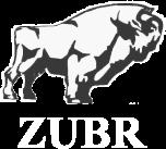 Главная лого